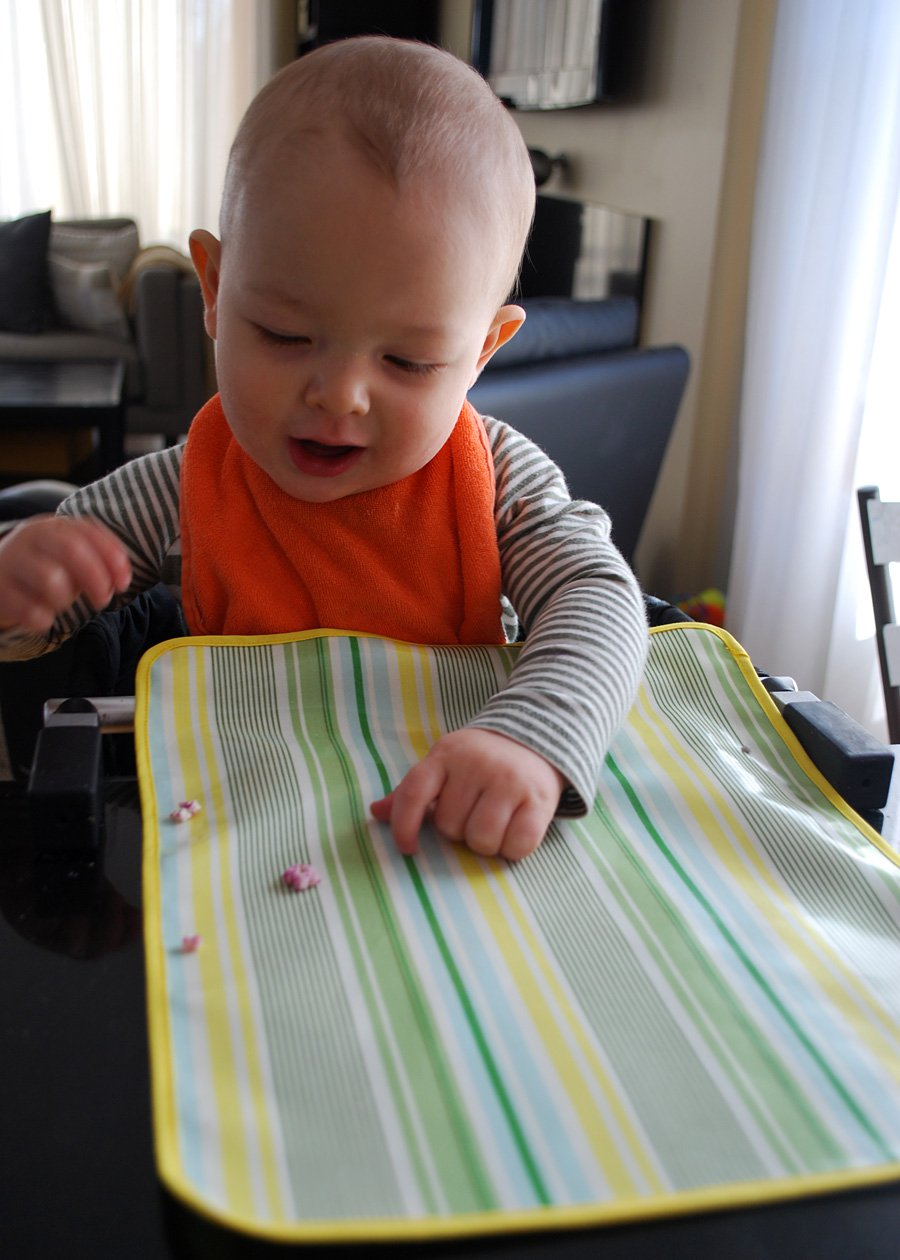 Best Chairs of 2019 Baby High Chair